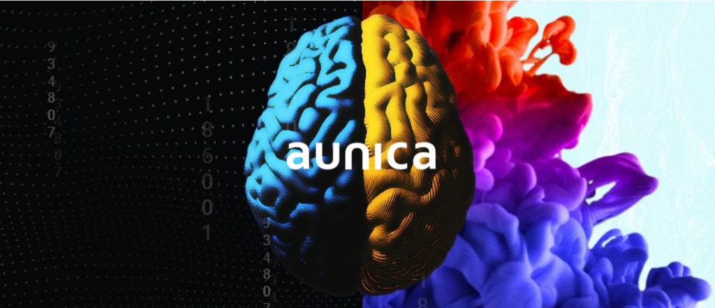 aunica Voice User Interface