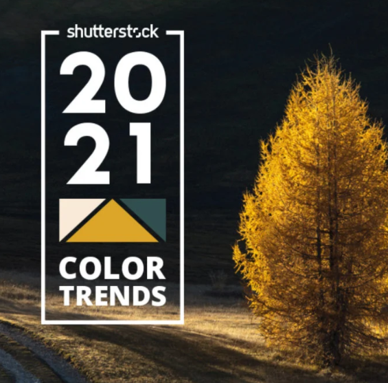 Color Trends 2021 aunica Shutterstock